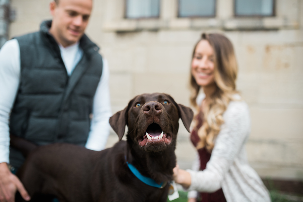 Pittsburgh engagement photographer - Pittsburgh wedding photographer - Hartwood Acres Image 7