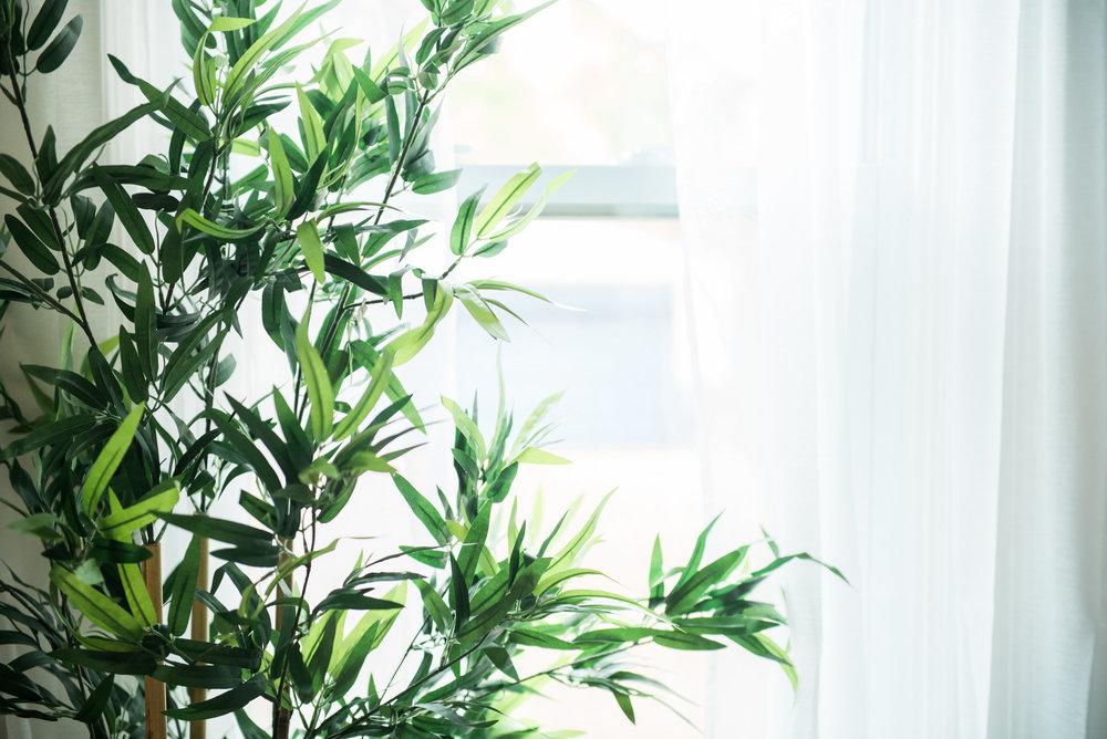 Kimmi Senior-0002.jpg