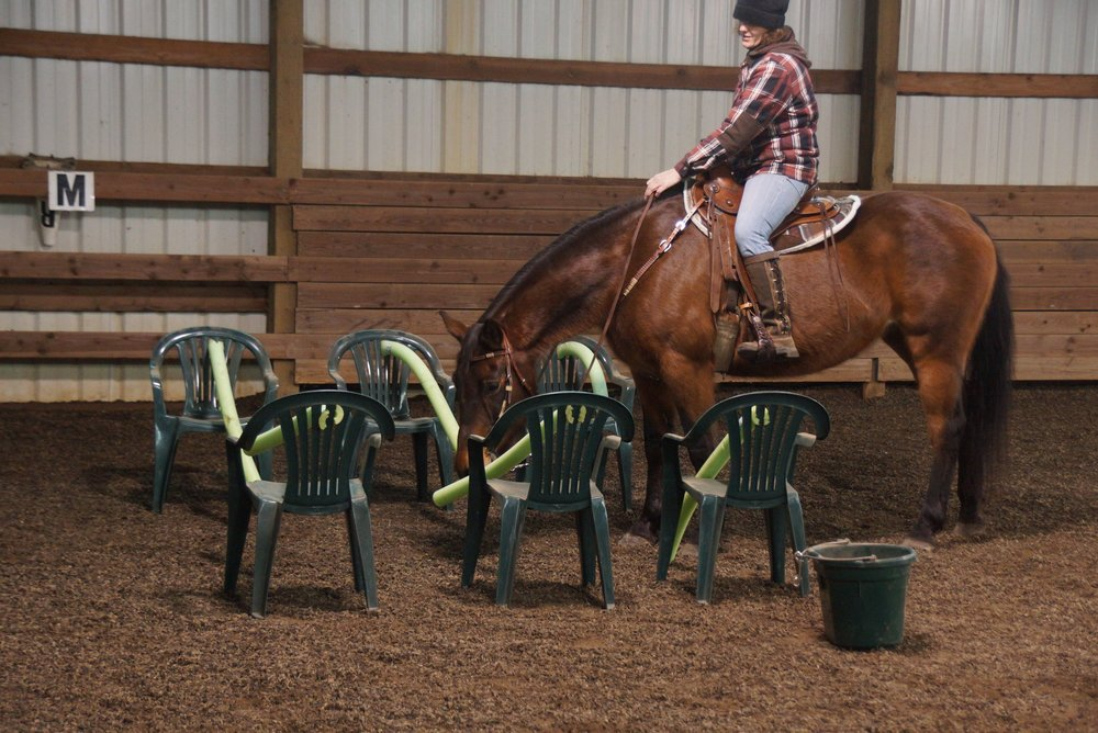 January 2013 Versatility Obstacle Clinic 172.jpg