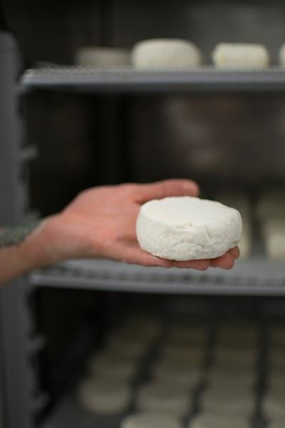 Stavanger Ysteri - cheesemaker