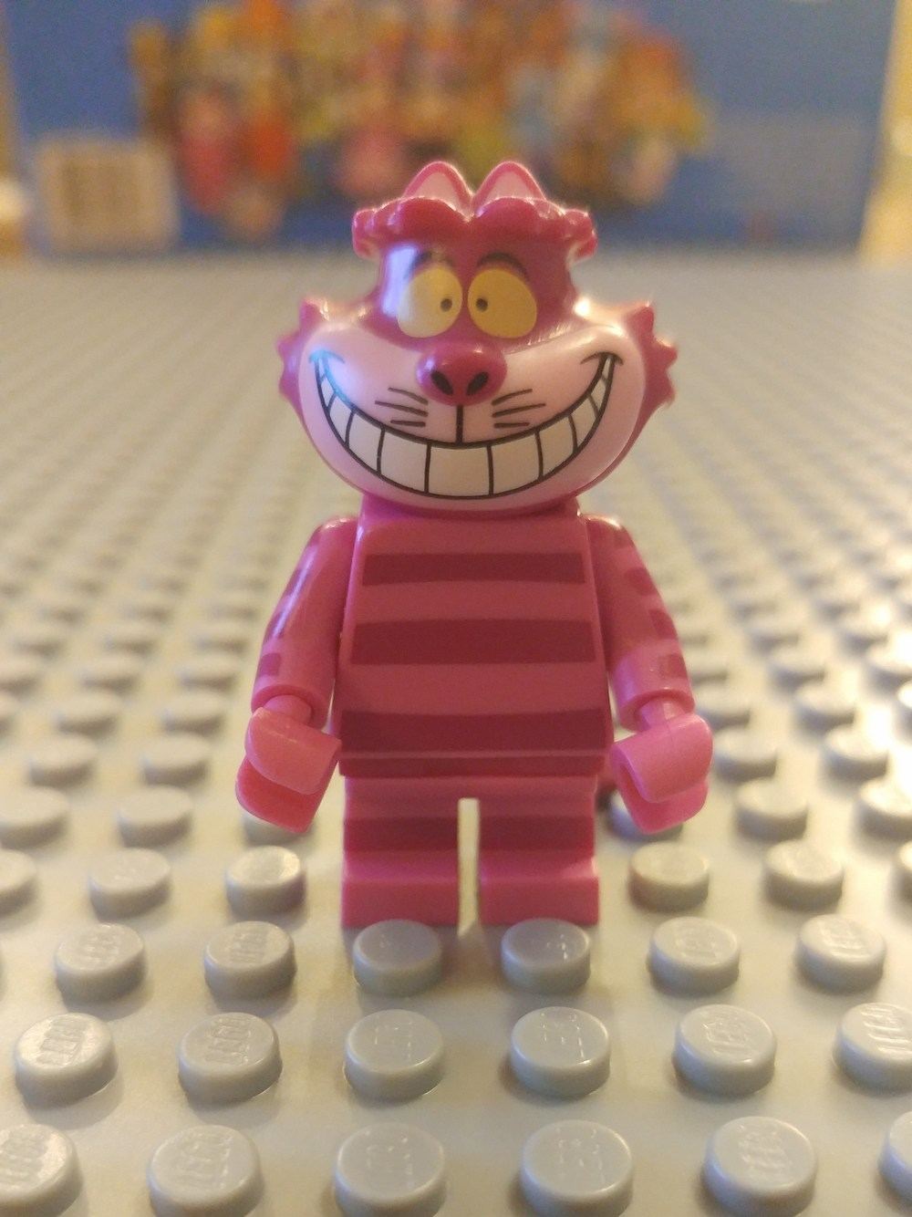 Cheshire Minifig Close Up - Front