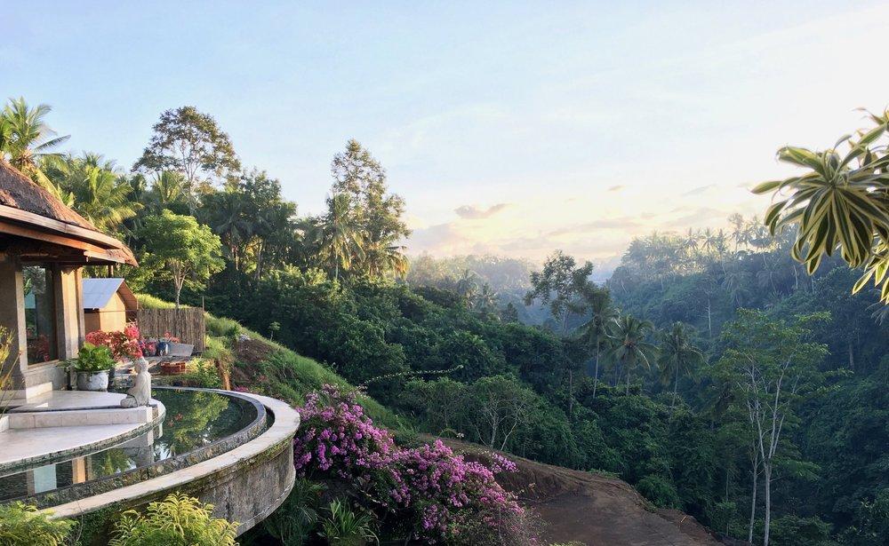 Viceroy Bali Ubud Hotel - 59.jpg