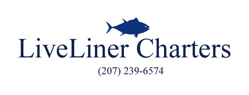 Maine deep sea fishing charters f v liveliner portland for Deep sea fishing trips near me
