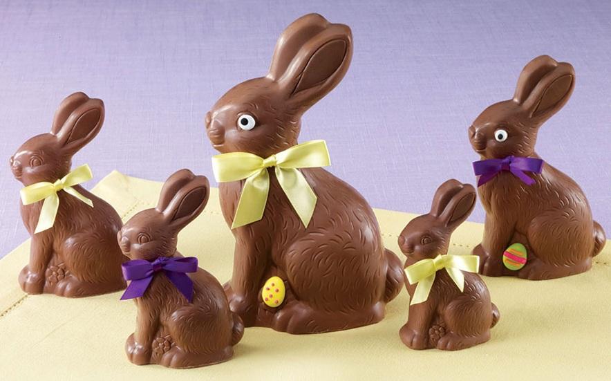 Sarris+Bunny.jpg