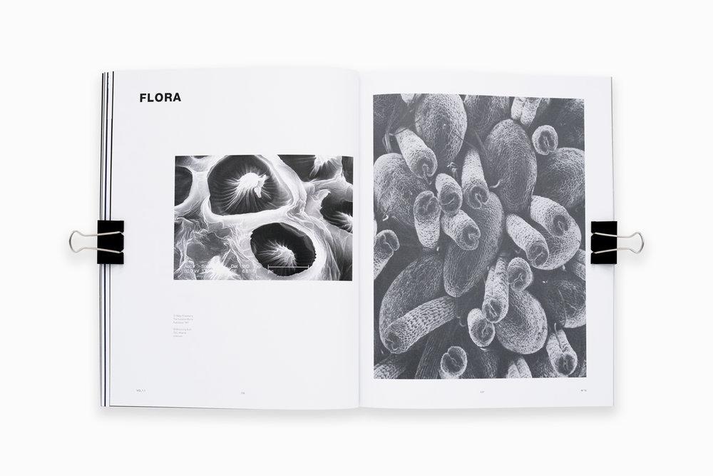VERGE_VE_Flora_1400_W.jpg