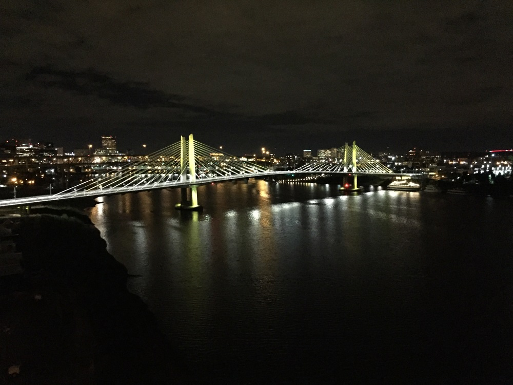one of the many beautiful bridges in portland