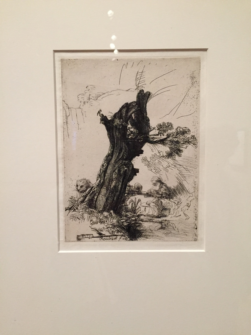 Saint Jerome Beside a Pollard Willow by Rembrandt van Rijn
