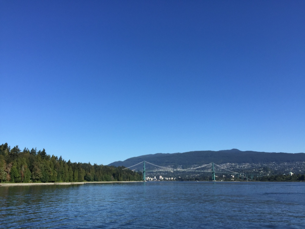 view from stanley park.