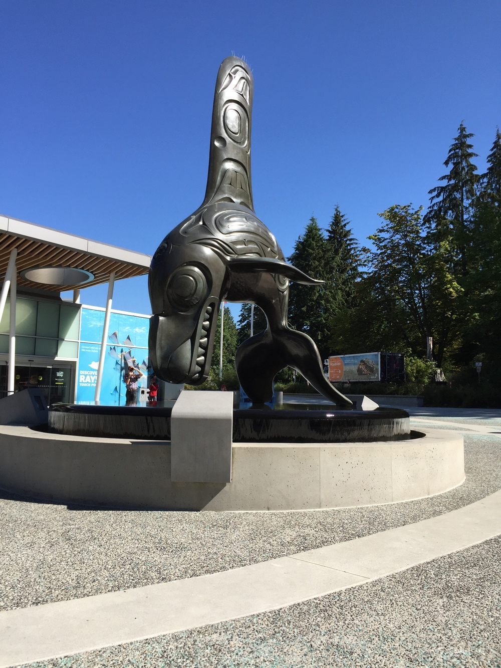 shark sculpture outside of vancouver aquarium.
