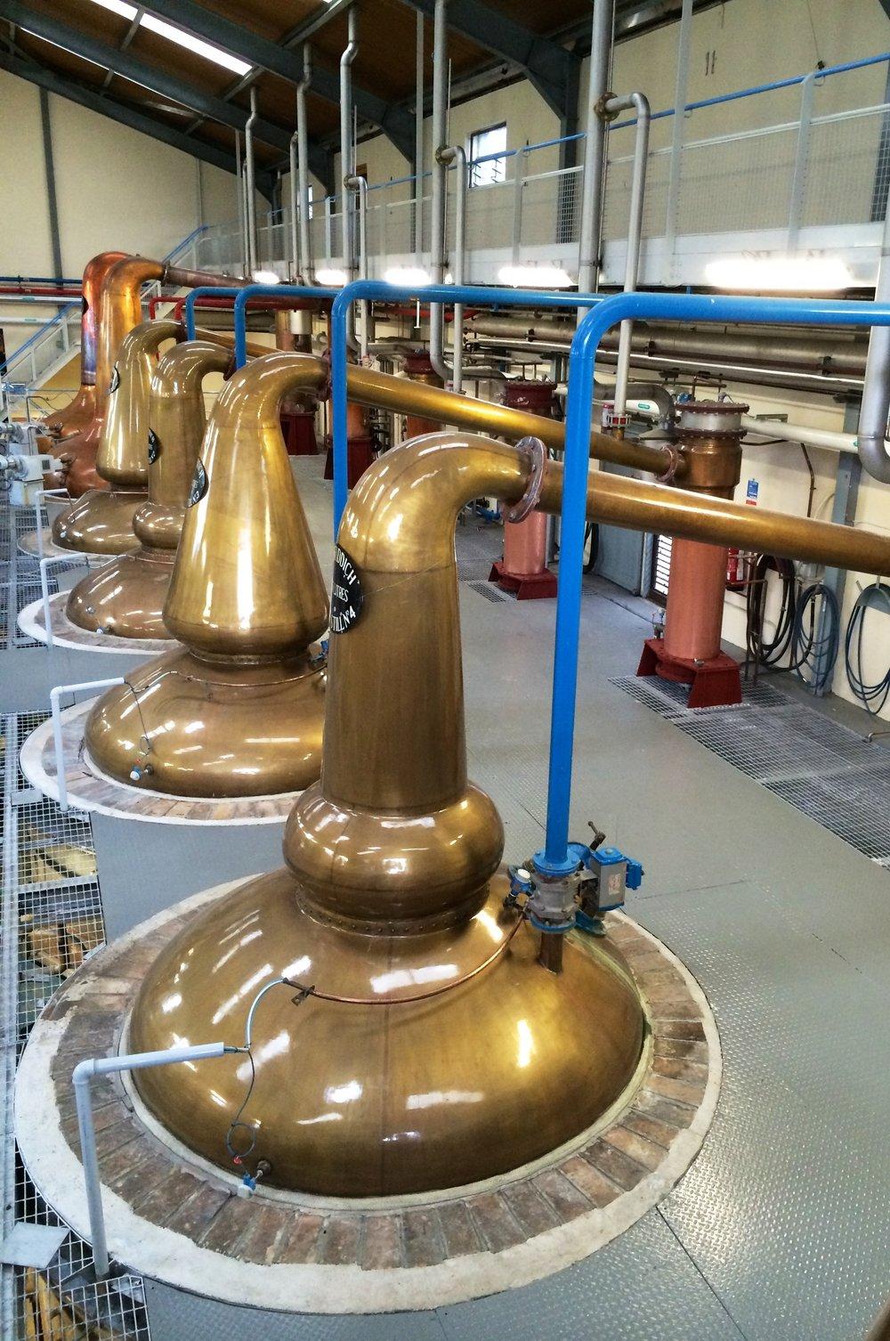 Glenfiddich Distillery, Scotland