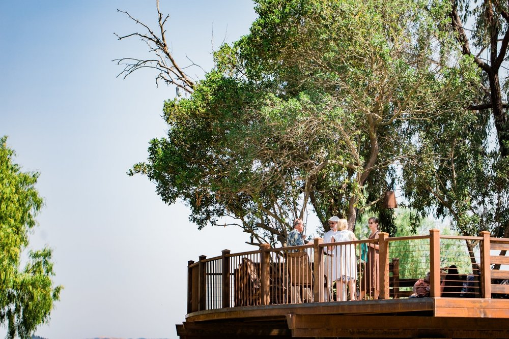 The Tree House at Pepper Tree Ranch