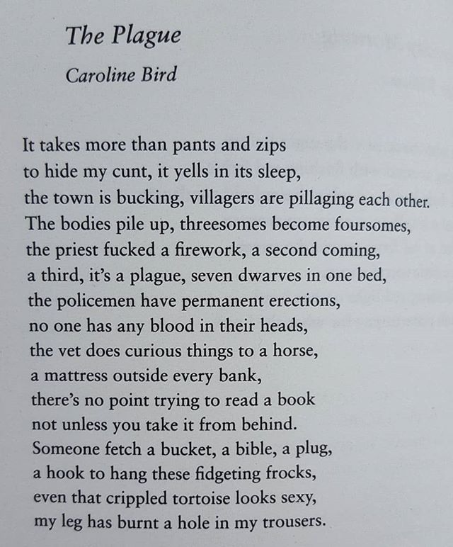 This is the first poem we read by Caroline Bird. It's in an anthology of sexy poems we picked up about 2/3 years ago. We knew then we had to have her perform at Freak Speak. On Friday 6th July our dreams come true. Come join us for some unapologetic mastery of language. Link in bio for limited earlybird tix
