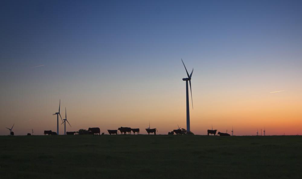 Wind_Farm.jpg