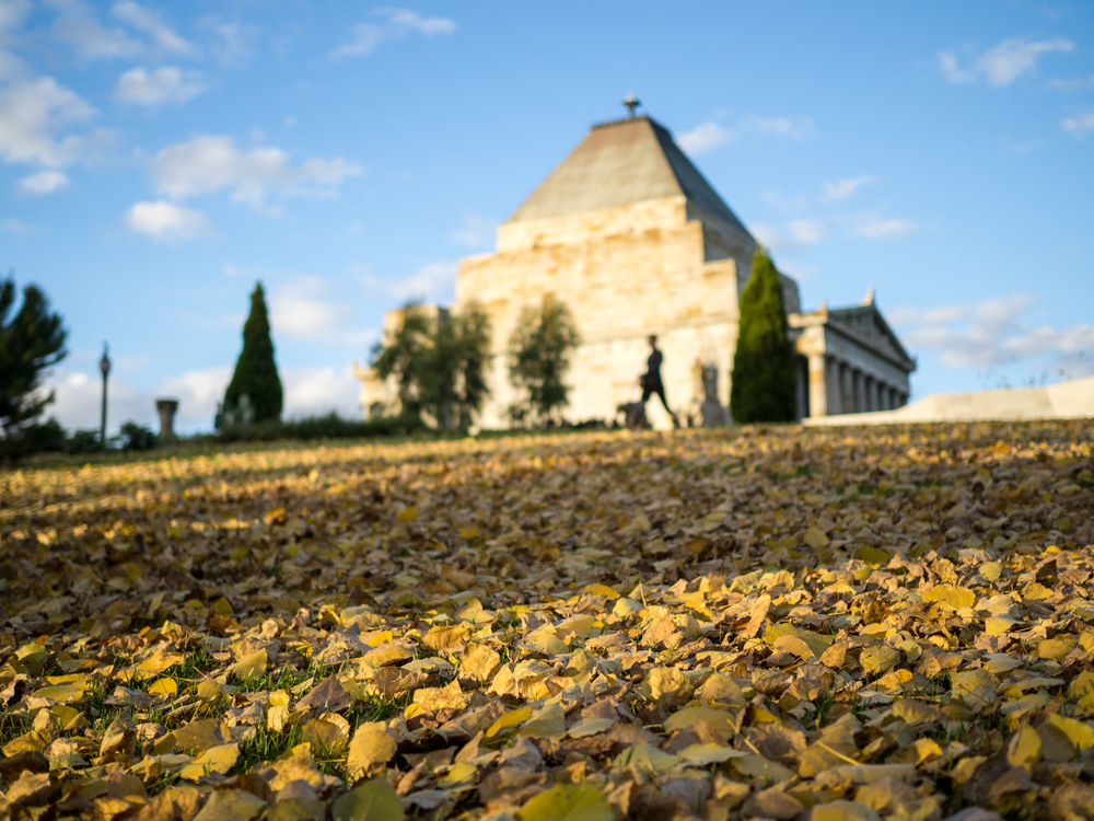 Autumn leaves cover the ground in front of the Shrine of Remembrance, Melbourne.