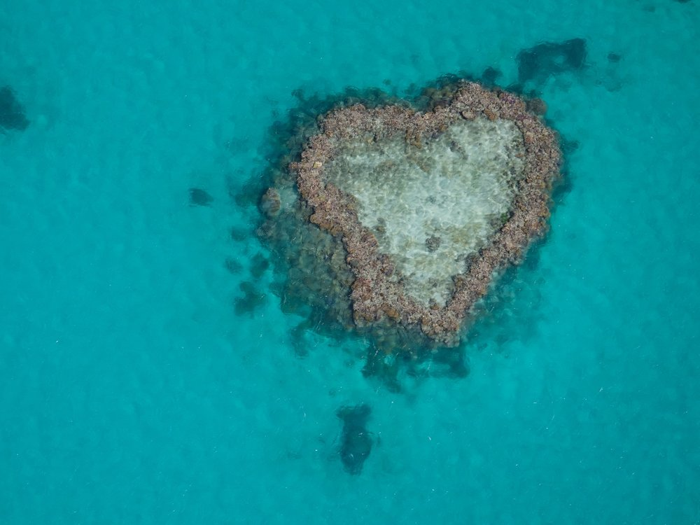 The famous heart reef. Spectacular place!