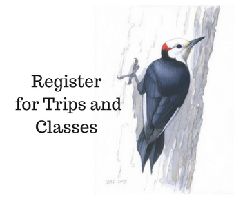 Click here or on the image above to register for festival trips and classes.