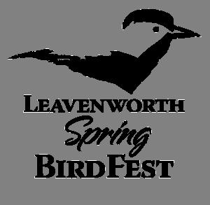 BirdFest Logo-SmallBlack.png