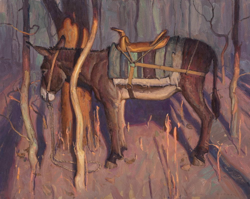 """""""Jack In The Thicket"""" 24""""x30"""" Oil"""