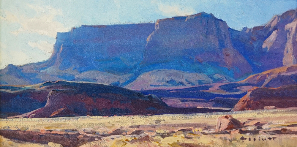 "(SOLD) Josh Elliott ""Desert Color"""