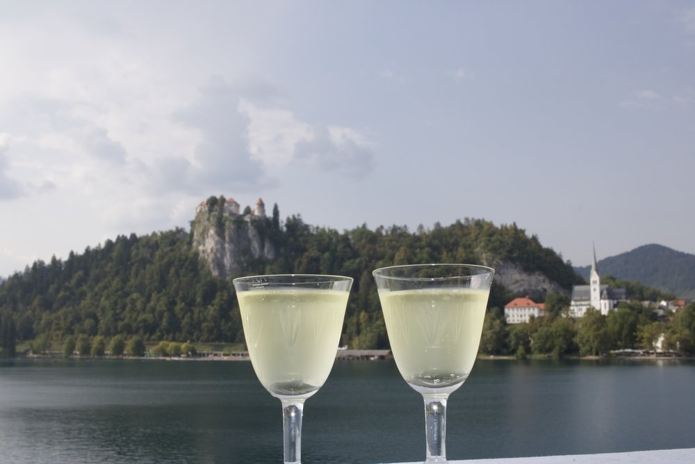 Cheers to engagements! And to Lake Bled, because seriously...that view!