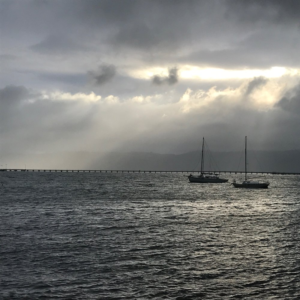 Wellington Harbour by The Doubtful Traveller