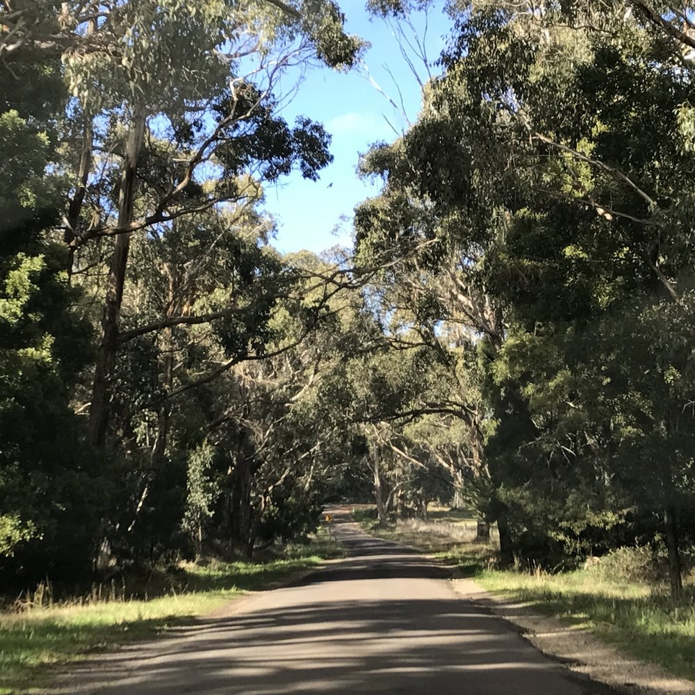 Side trip from Melbourne: around Daylesford, by The Doubtful Traveller