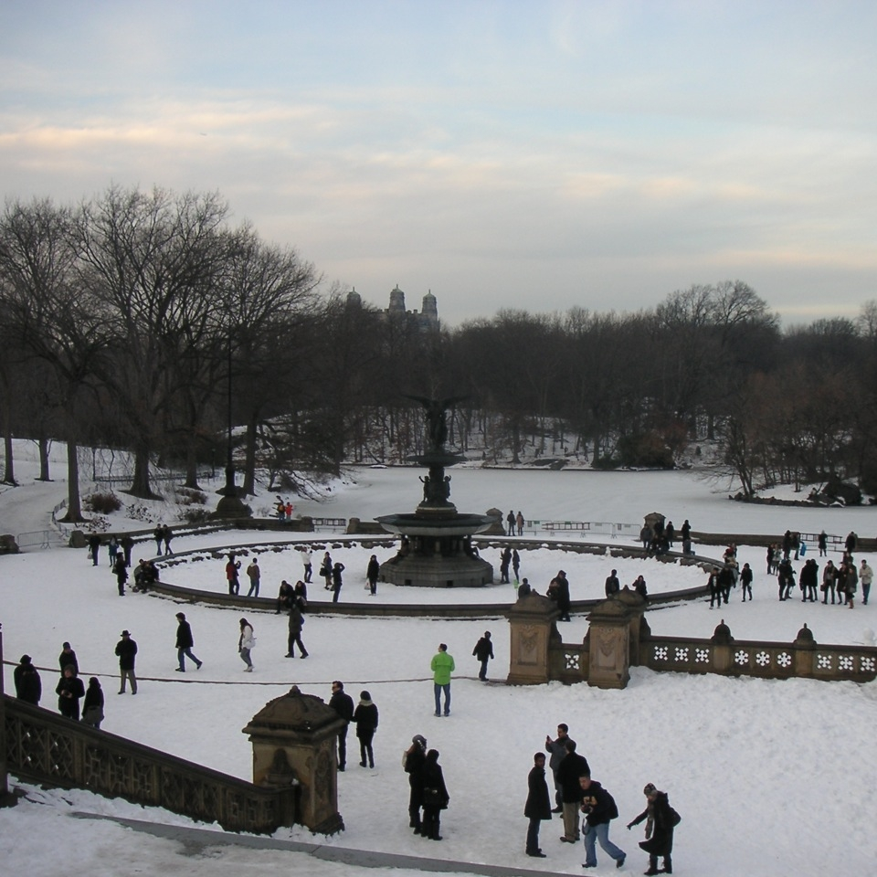 Copy of Central Park, New York, in winter by Zara Mansoor for The Doubtful Traveller