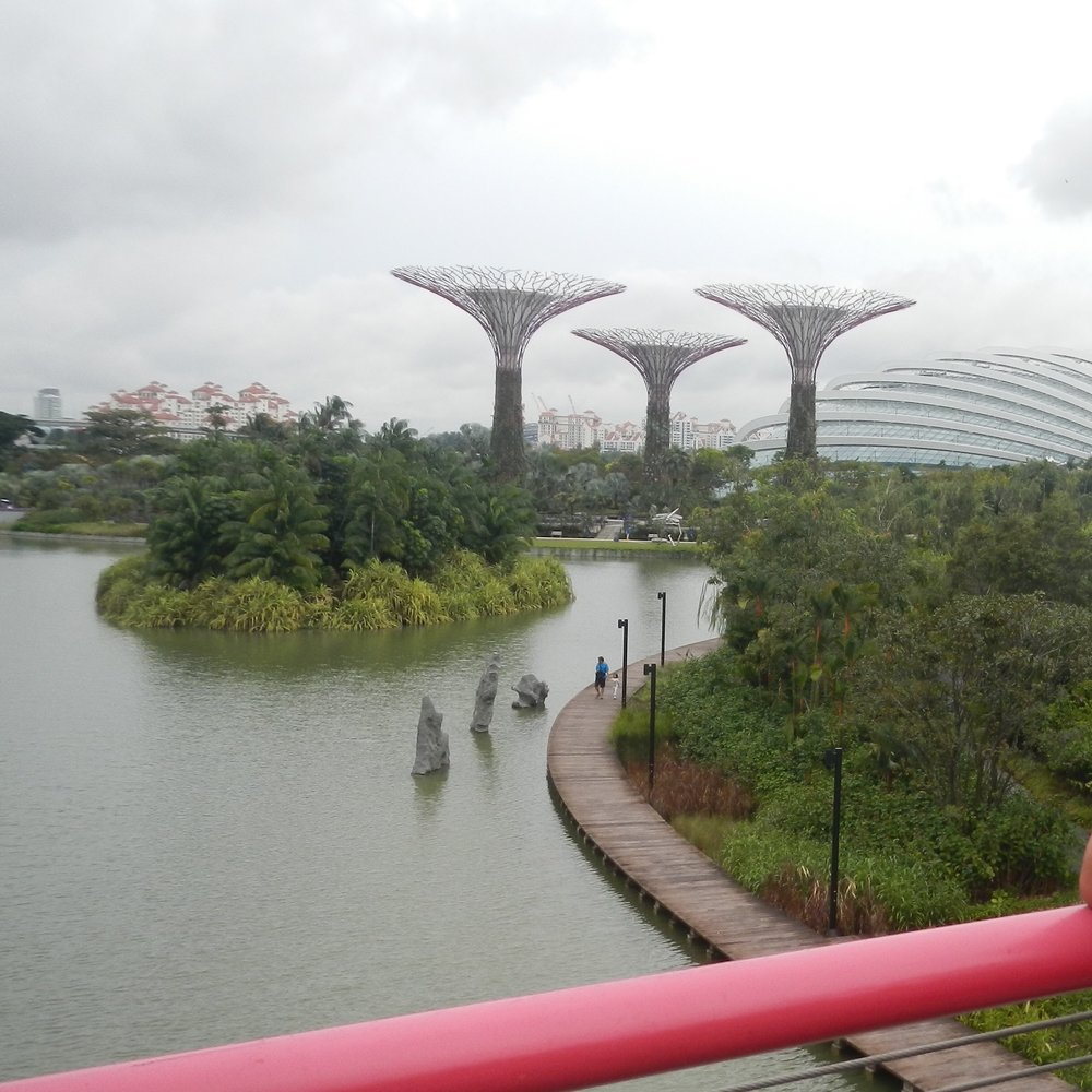 Gardens by the Bay, Singapore by The Doubtful Traveller