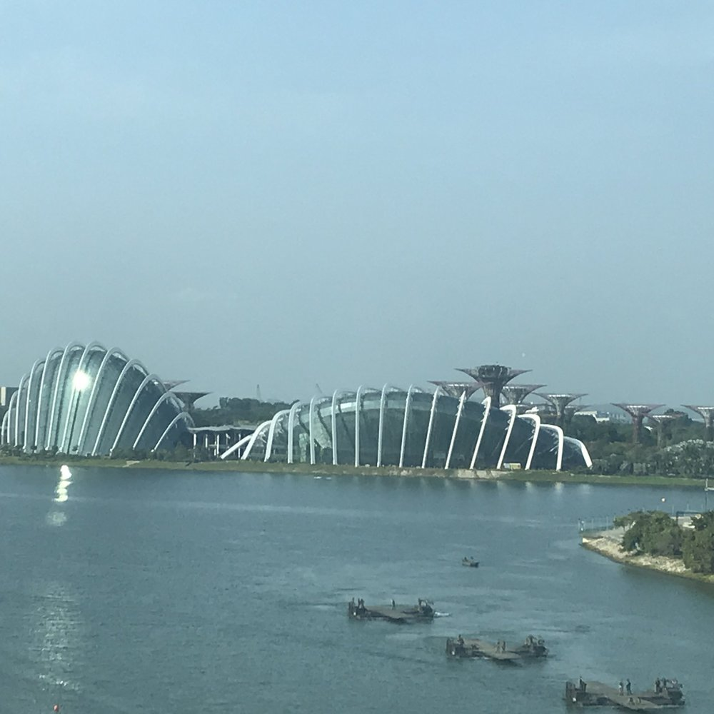 Garden by the Bay, Singapore by The Doubtful Traveller