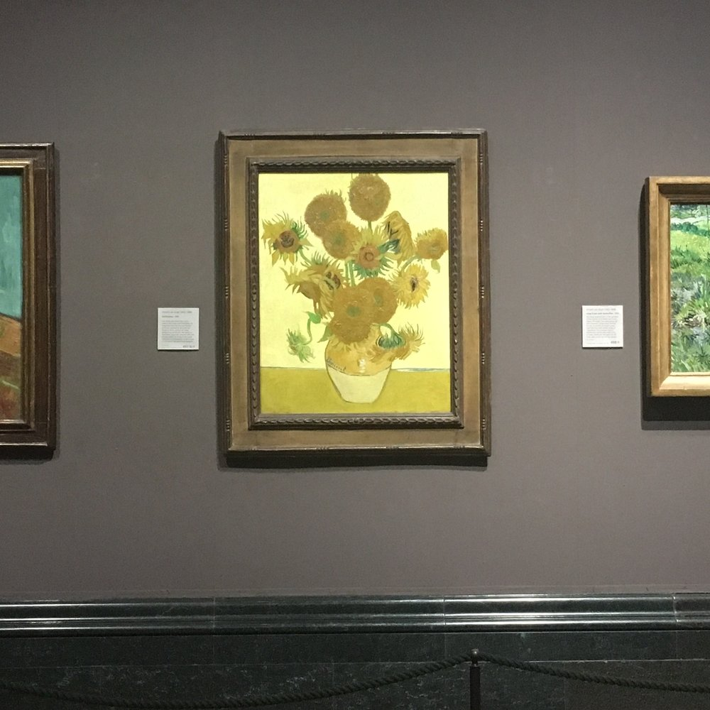 Van Gogh's 'Sunflowers', National Gallery, London. The Doubtful Traveller