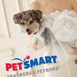 PetSmart thumb.jpg
