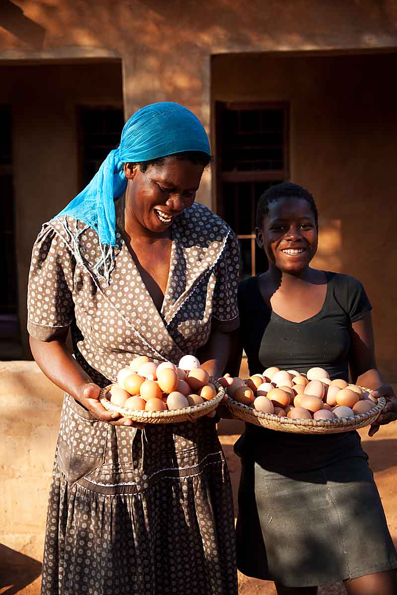 The original idea of having the chickens was to sell the eggs in the market.  Most of the time, the kids ate the eggs before they made it to market.