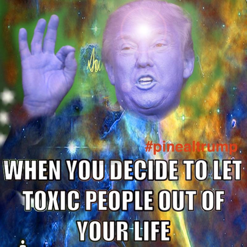 pineal_trump_greber_toxic