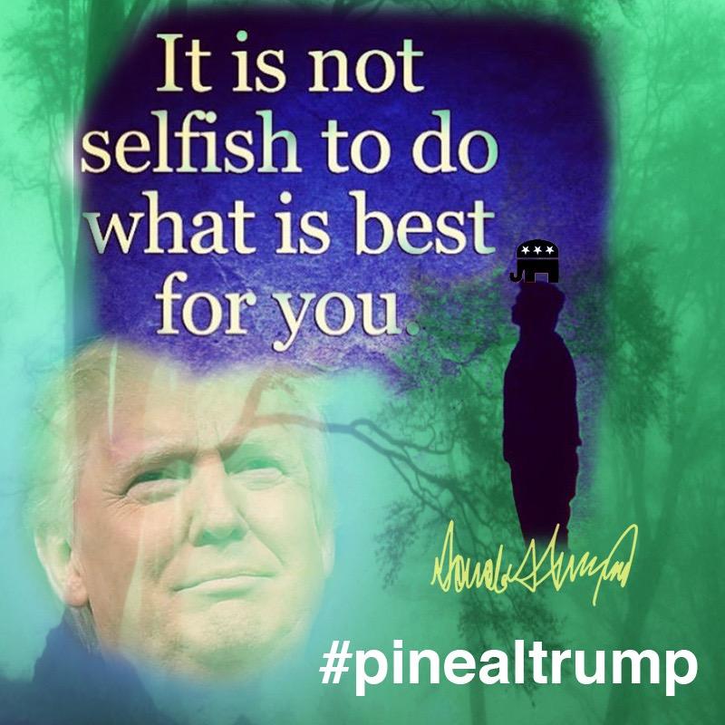 pineal_trump_greber_8