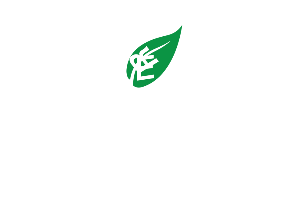 your_greener_stay.png