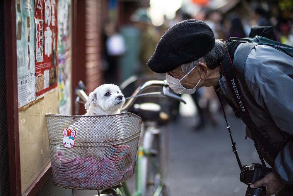japan2014-4.jpg
