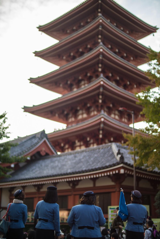 japan2014-15.jpg
