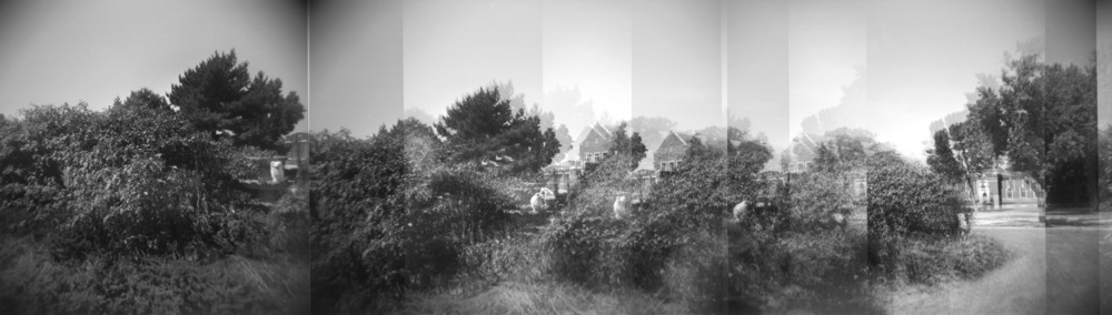 Alton Mental Health Center | Multi Exposure Holga Pano | Alton, IL | September 2013