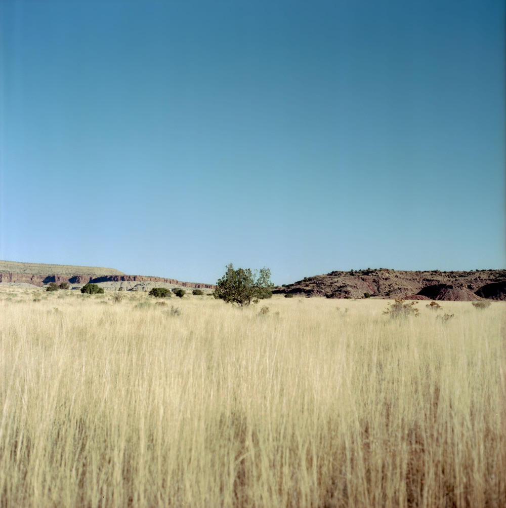 absentmindedphotographer :     MI - LA | Somewhere in Arizona | November 2014