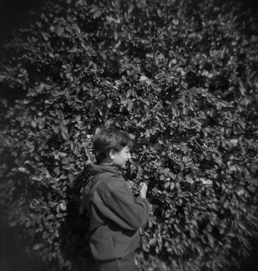 Xander Brody | Los Angeles Natural History Museum | Feb 2013 Holga - Tri X