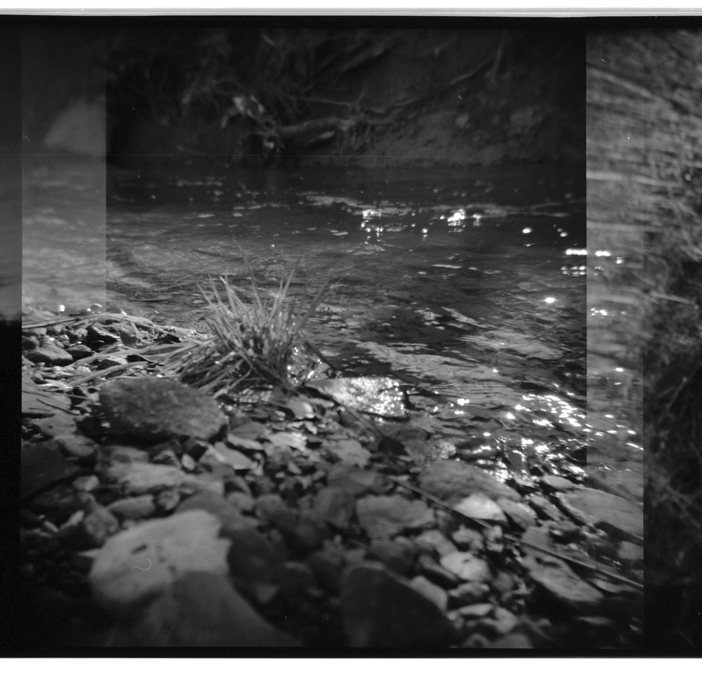 Old Holga shot of the creek behind my Grandmother's house in Kentucky :)