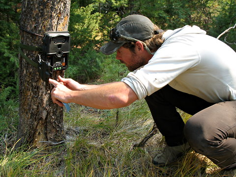 Patrick Graham, a field technician with Defenders of Wildlife, set up a camera trap