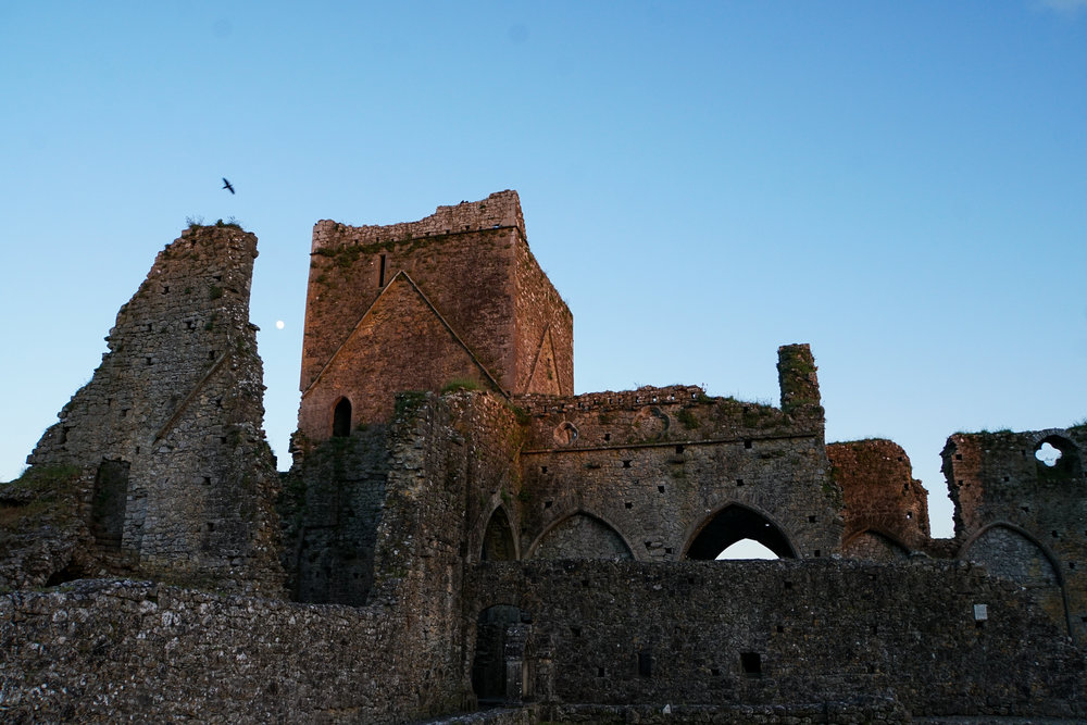 Hore Abbey sunset moon and raven.jpg