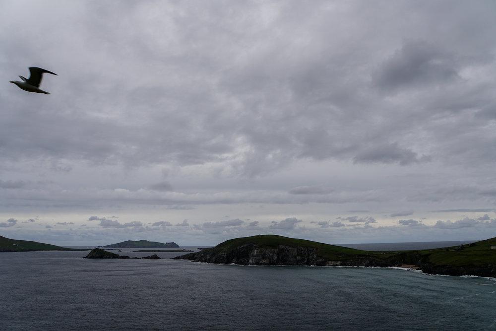 Passageway to the Wild Atlantic