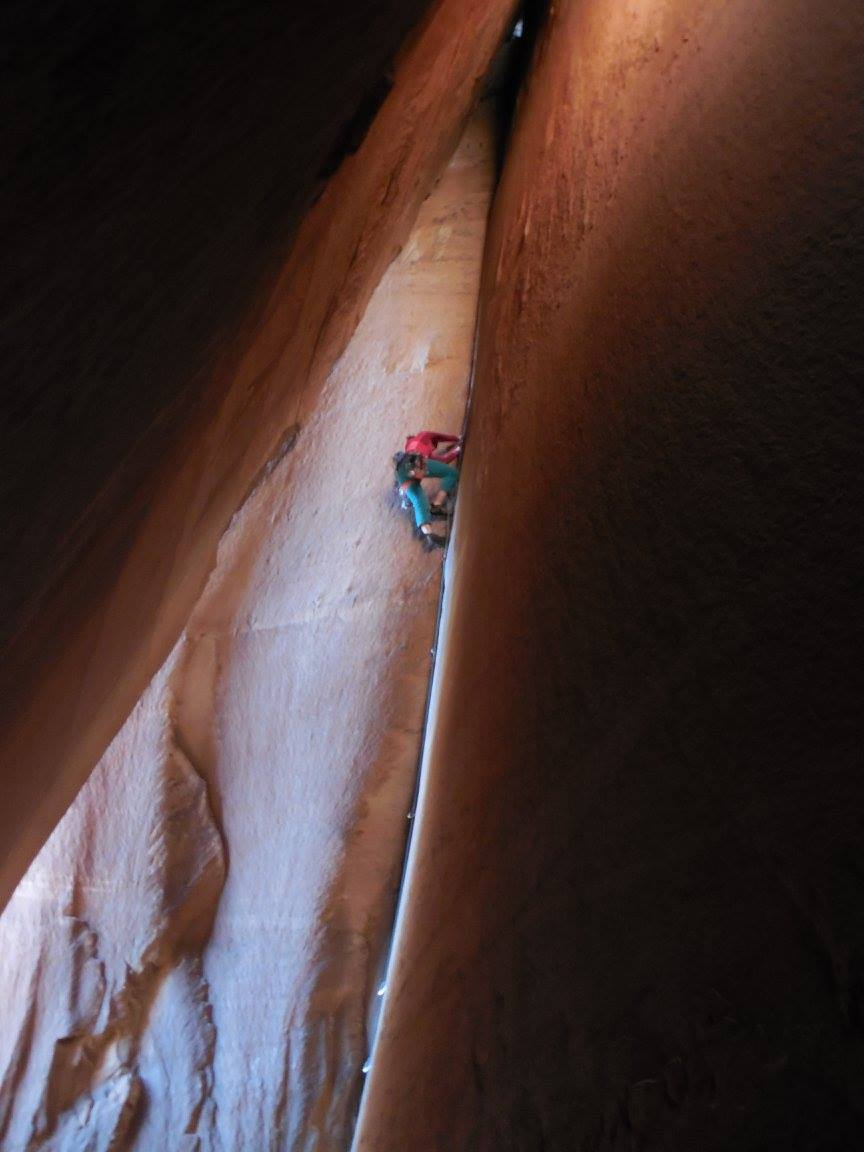 Rachel climbing in Indian Creek. Photo by Cat Cahoon.