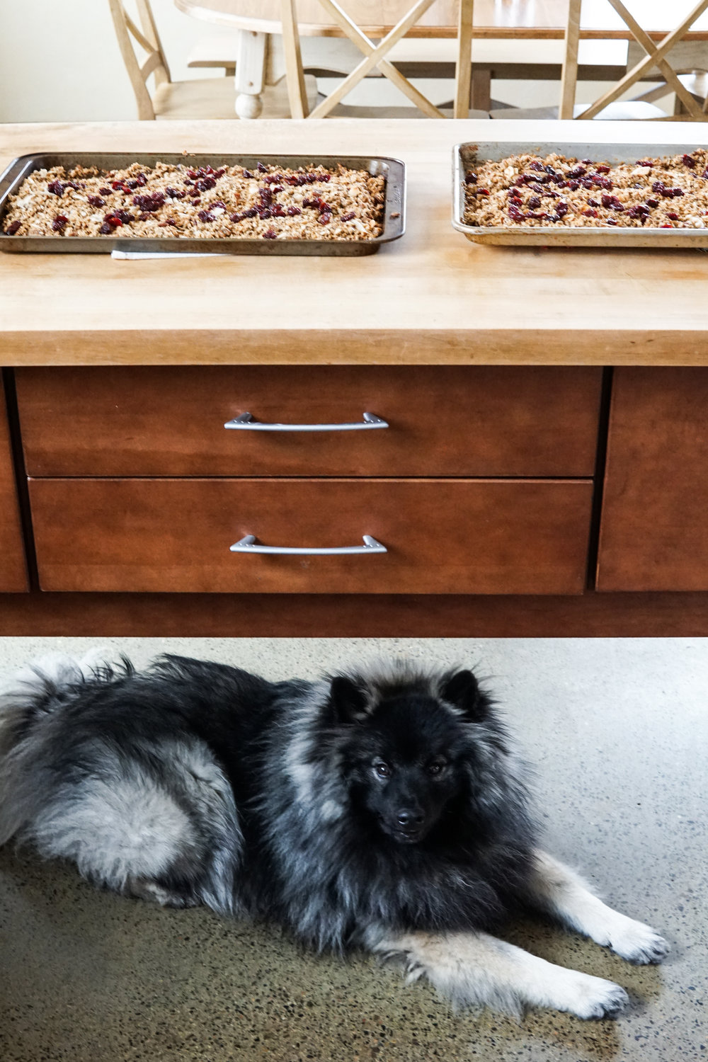 Gambit guards the granola.