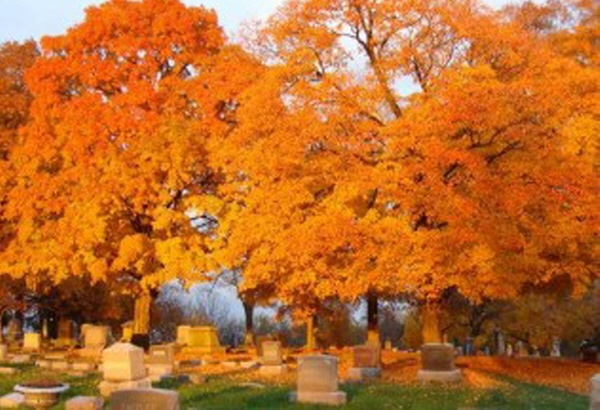 All Saints and All Souls Day Celebration - October 29th from 2-5pm at Mt. Olivet Cemetery. Balloon release, ceremony, historic cemetery tours, hay rides, great food and awesome music throughout the day.