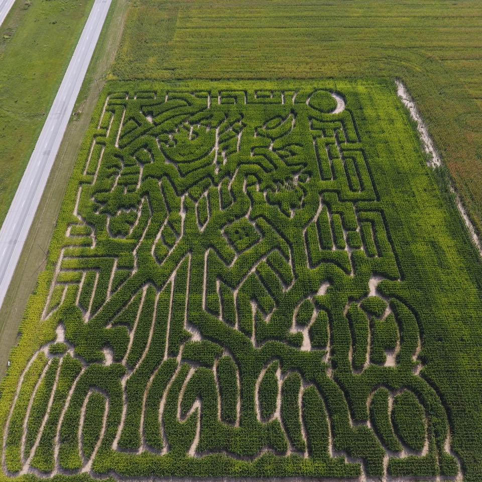 October 13th-15th: Parkers Corn Maze - 10a-6p at 5532 Hwy 61 N