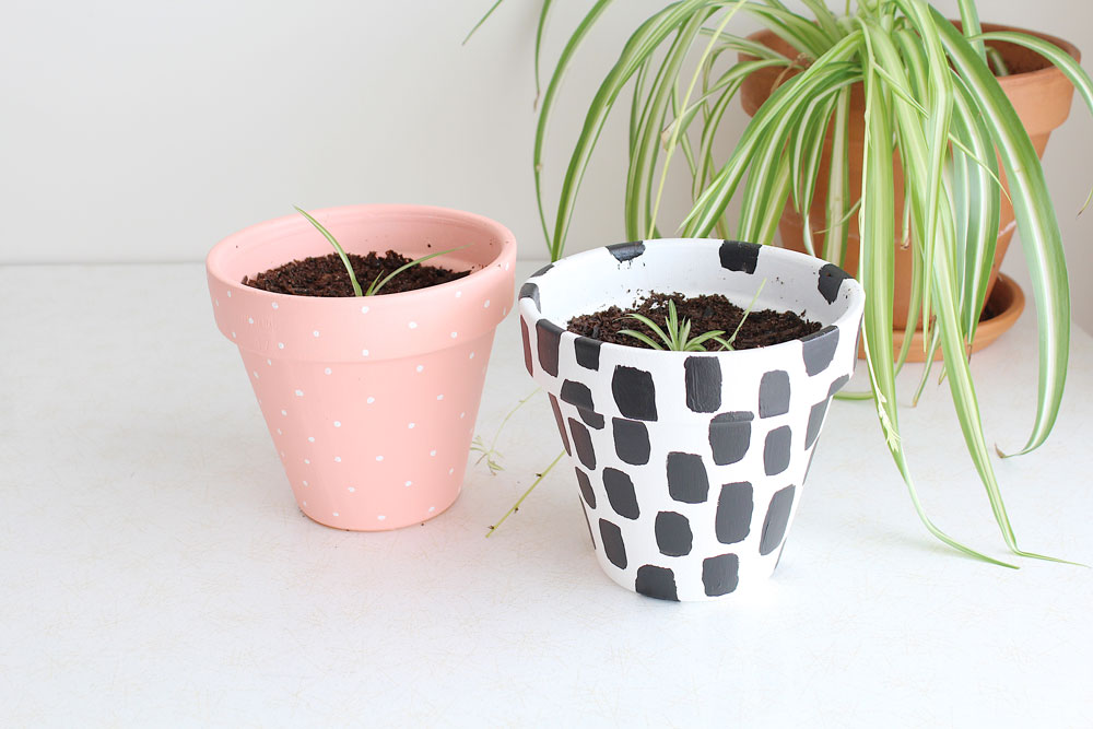 DIY-Painted-Plant-Pots-1.jpg