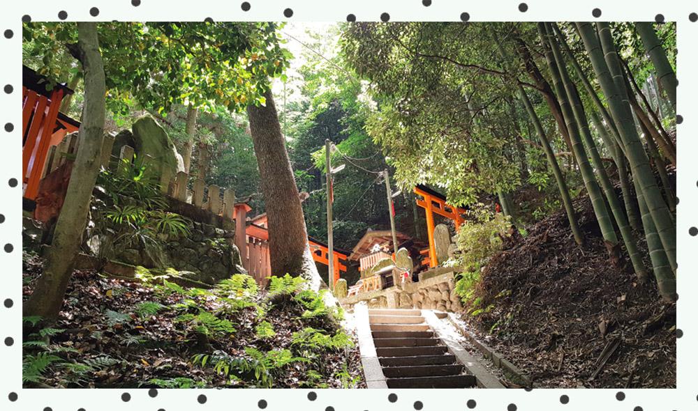 fushimi-inari-shrines-kyoto.jpg